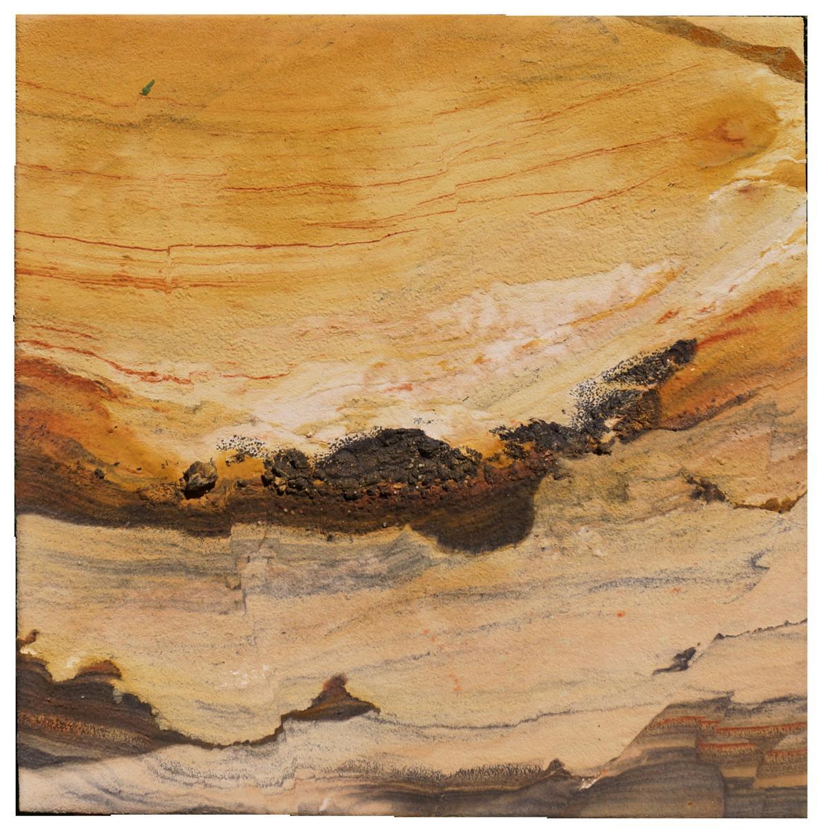 Detail Mangan