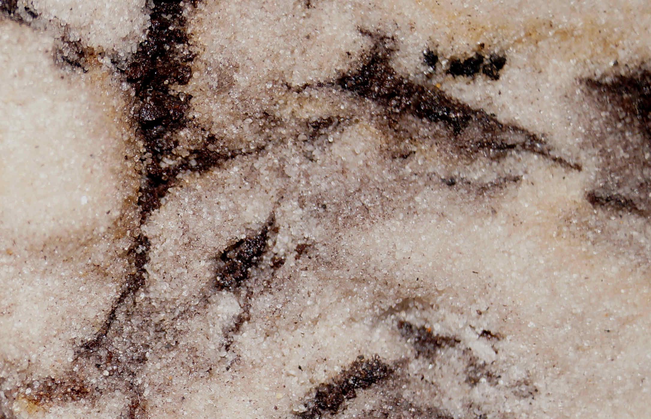Detail Duingen